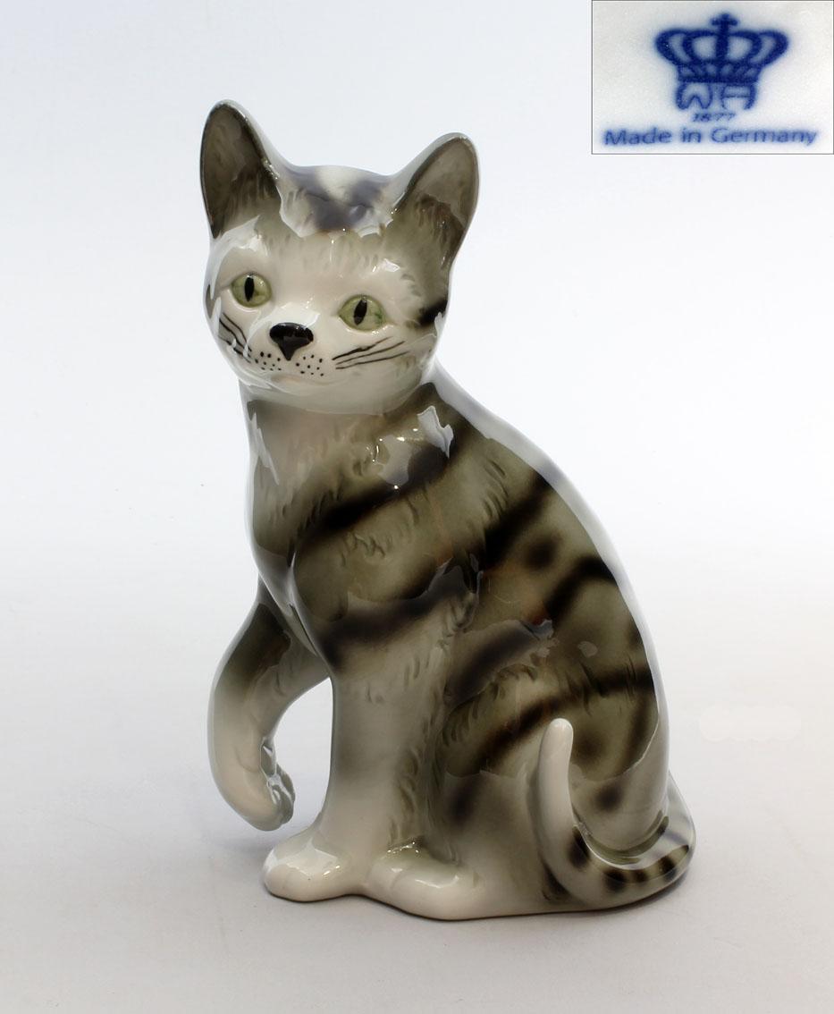 Katze Getigert Grau